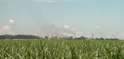 Perto da safra, mercado espera etanol mais barato nos postos após queda de 9% nas usinas