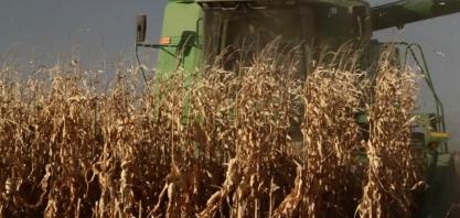 Queda do petróleo preocupa setor de etanol dos EUA