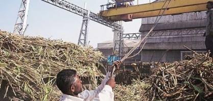 Produção de açúcar da Índia cai 21% nos primeiros seis meses da safra, diz ISMA