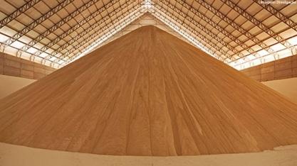 Usinas começam a fixar preço de exportações de açúcar de 2022/23
