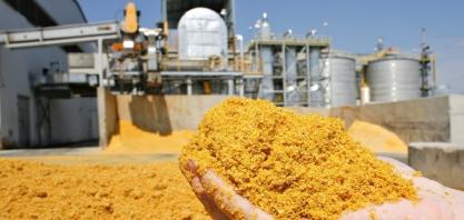 'No setor de etanol, quem fizer o dever de casa vai superar a crise'