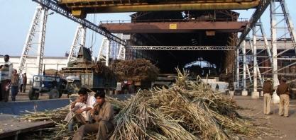Açúcar/Índia/ISMA: produção cai quase 20% até fim de abril ante temporada anterior