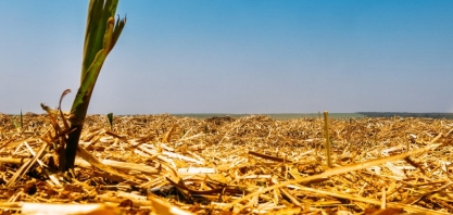Uso do etanol evita 515 milhões de toneladas de CO2 na atmosfera