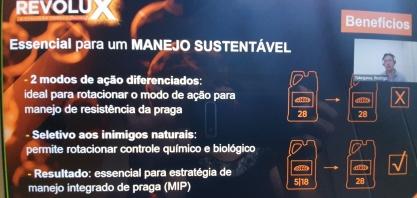 Cana ganha a proteção de inovador inseticida para o controle da broca, a principal praga dos canaviais