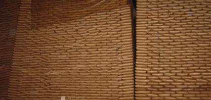 Açúcar/Cepea: Produção aumenta, mas preços estão mais altos