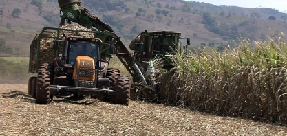 Com consumo de etanol em baixa, produção de açúcar aumenta em Goiás