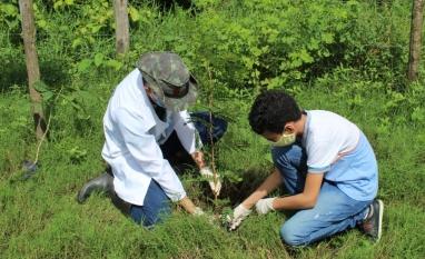 Pindorama comemora Semana do Meio Ambiente com ações restritas