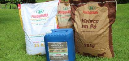 Pindorama amplia mix de produtos da cana