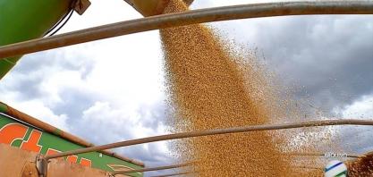 Agronegócio brasileiro exporta US$ 10,9 bilhões em maio e bate recorde para o mês
