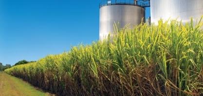Consumo de etanol em MG tem queda em abril de 31,4%