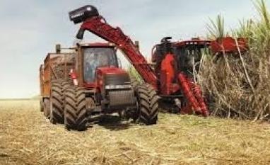 Açúcar/Itaú BBA: Alta de preço global deve ser limitada por queda na perspectiva de déficit em 20/21