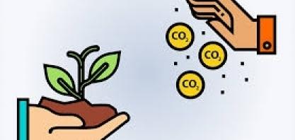 Ministério da Economia defende mercado de comercialização do crédito de carbono