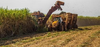 SENAR-PR realiza diagnóstico do plantio da cana-de-açúcar no Paraná