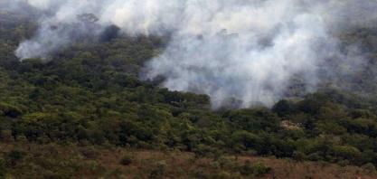 Decreto de suspensão de queimadas não afetará safra de cana em AL