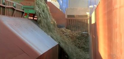 Com queda no consumo do etanol, usinas apostam no açúcar durante a pandemia