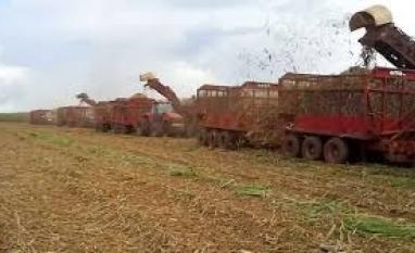 Retomada da demanda de etanol anima usinas no Brasil
