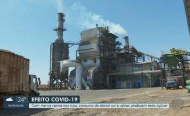 Consumo de etanol cai, mas preço volta a subir na região de Ribeirão Preto