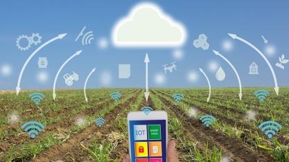 Pesquisa mostra o retrato da agricultura digital brasileira