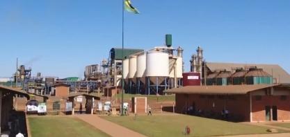 MG Rural destaca safra recorde de cana-de-açúcar de Minas Gerais; Bioenergética Aroeira é destaque