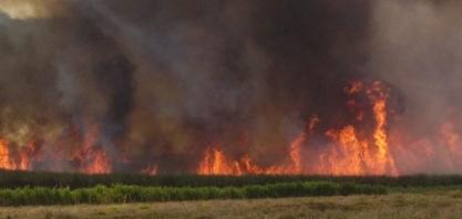 Usinas goianas atuam fortemente no combate a incêndios