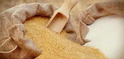 Contratos futuros do açúcar iniciam a semana em baixa
