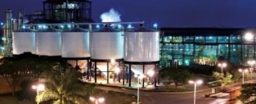 Vagas de emprego na BP Bunge Bioenergia