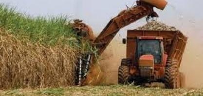 Agronegócio de MG fatura mais com as exportações