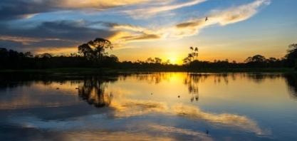 ´O valor da Amazônia tem de ser precificado´, diz Rubens Ometto