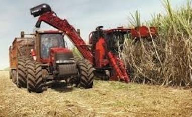 Ministra espera êxito com EUA sobre açúcar e quer levar etanol à Índia
