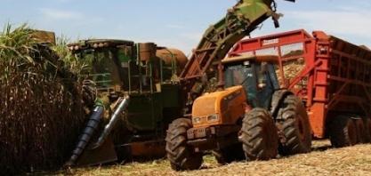 Minas Gerais tem crescimento de 7% na moagem de cana até agosto