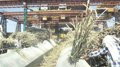 Açúcar: Exportações da Índia devem bater recorde em 2019/20