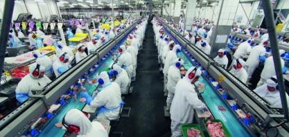 Marfrig abre 400 vagas de emprego em Várzea Grande