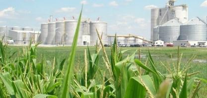Brasil não deve renovar cota do etanol e vai negociar com EUA, diz fonte