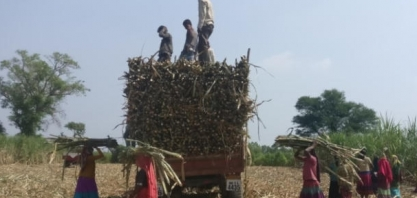Índia deve manter subsídio à exportação de açúcar pelo 3° ano seguido