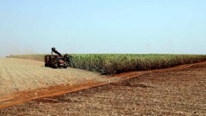 Bahia quer acionar pacote fiscal para atrair usina cooperativada de Pernambuco