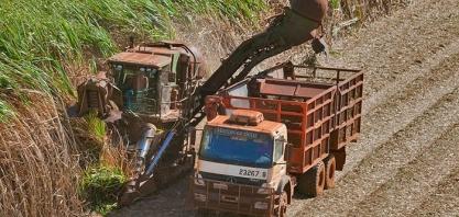 BNDES financia projeto de produção sustentável de biocombustível no Mato Grosso do Sul