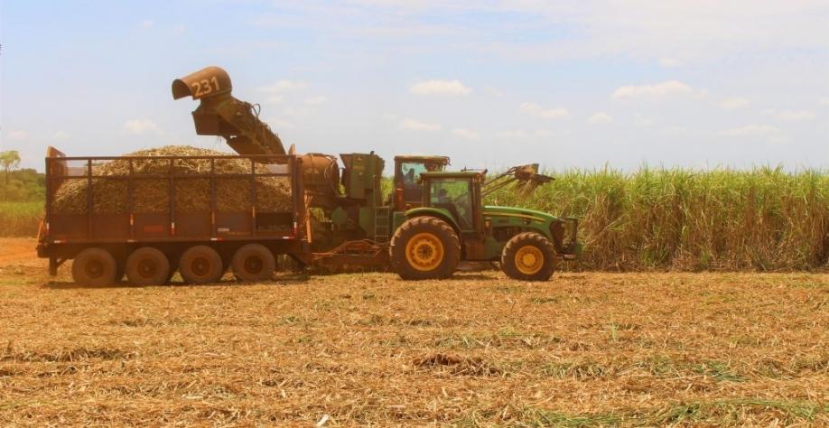 Atualmente, todas as 18 unidades sucroenergéticas em operação no Estado produzem etanol, dessas dez são produtoras de açúcar. (Imagem: Divulgação/Biosul)