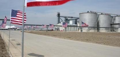 Raízen/Ricardo Mussa: Extensão da cota de etanol foi oportunidade para negociação continuar de pé
