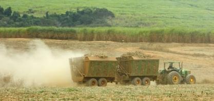 Agropecuária é o setor que mais gerou empregos em 2020