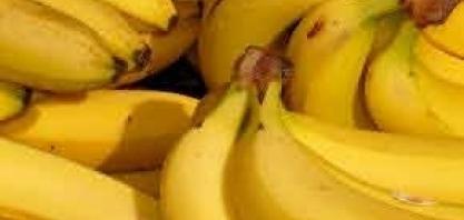 Adolescente desenvolve projeto de biocombustível a partir da banana: 'fruta mais desperdiçada do brasil e do mundo'