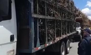PRF é questionada por abuso em operação contra caminhões com cana