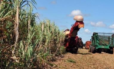 BNDES suspende novamente financiamento do Pronaf por esgotamento de recursos