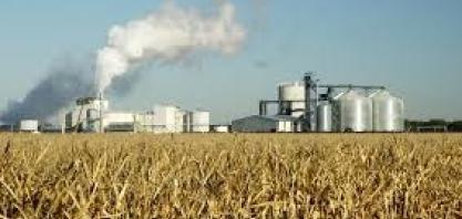 Biocombustíveis/EUA: EPA apoia decisão de tribunal que limitou isenções a pequenas refinarias