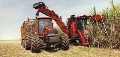Colheita de cana cresceu 0,5% em SP na safra 2020/21, diz Secretaria da Agricultura