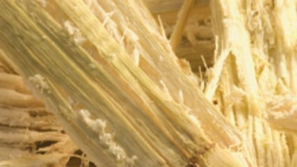 """Bagaço de cana-de-açúcar consegue """"limpar"""" água contaminada"""