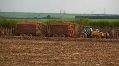 Alvo de Trump, etanol brasileiro vê futuro promissor com Biden