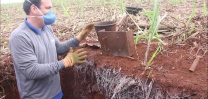 Pesquisa busca validar benefícios do plantio mecanizado em diferentes tipos de preparo de solo