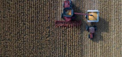Brasil vê onda de 'washouts' em contratos de milho e exportações ficam ameaçadas