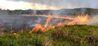 MS: Nova portaria amplia suspensão de queima controlada no Estado