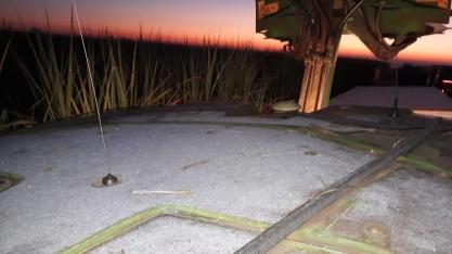 Nesta manhã de 30 de junho, geada nos canaviais da região do Paranapanema